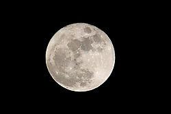04-09-09_001_Full_Moon.jpg
