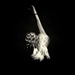 0496_dancer.jpg
