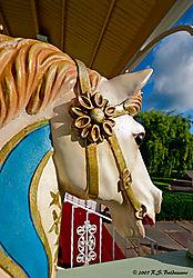105057Carrrousel-Horse.jpg