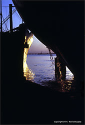 108335Galveston_Wharves.jpg