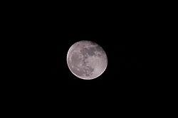 11-08-2014_2350_2.JPG