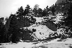 110002Eagle_Falls_Trail_Tahoe.jpg