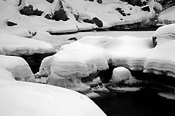 110002Eagle_Falls_Trail_Tahoe_2.jpg