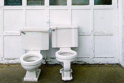 115479Free_Toilets_TN.jpg