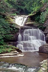 1334nature_robert_treman_state_park.jpg