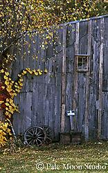 16234old_barn_fall_OPT360.jpg