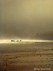 16234oregon_beach1_OPT.jpg