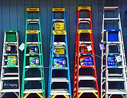 18_Ladders_DSC_0365.jpg