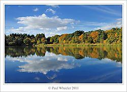 2011-10-28DSC_9121_edit_copyShrunk.jpg