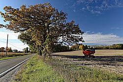 2014-10-09-Barns-070-Rustic02xp.jpg