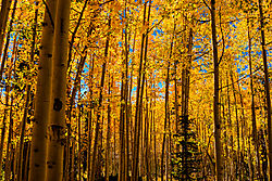 2014_September_Grand_Canyon_140024000240.jpg