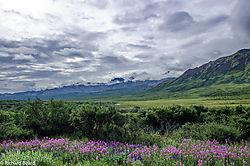 2017-7_Alaska-5.jpg