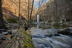 2019-02-09_11_36_10_Arkansas_Outdoors_33.jpg