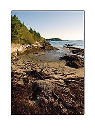 22606Maine-Coast.jpg