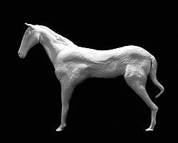 28980Clay_Horse.jpg