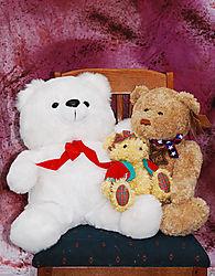 3_Bears.jpg