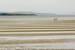 74927DMC2950_Low_Tide.jpg