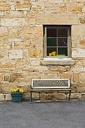 74927DMC3230_Flowers_and_Bench.jpg