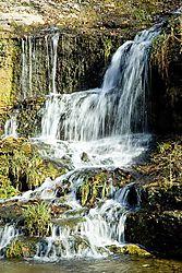 79461waterfall_1.jpg