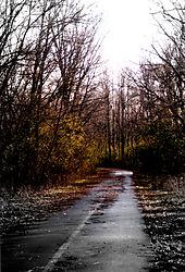 80490Park-Road-EDITED-V2.jpg