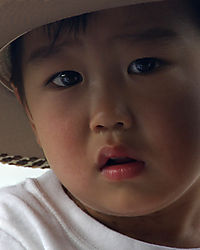 9078Little-Boy-2.jpg