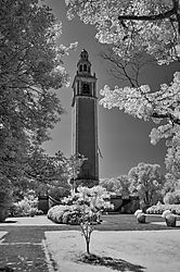 A-AS-BW--Carillon_in_IR-ST-John_D_Roach.jpg