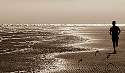 AJ_Beach_Run_Harbor_Island_SC.jpg