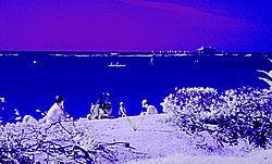 AT_THE_BEACH_6222.jpg