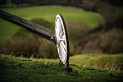 A_Buck_Wheel.jpg