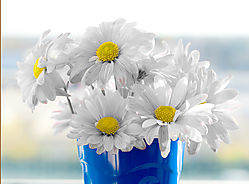 A_CUP_OF_FLOWERS1.jpg
