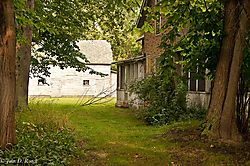 Abandoned_Property_in_the_Woods-8420.jpg
