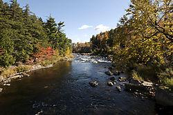 Adirondacks1.jpg