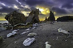 All_the_rocks_of_rialto_beach.jpg