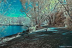 An-Inviting-Bench-by-the-Lake-IR-PPW.jpg