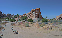 Another-Rock-formation-in-Joshua-Tree-National-Park-PPW.jpg