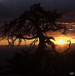 Ashville_Sunrise.jpg