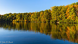 At_Echo_Park_Lake-3.jpg