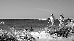 BEACH_COMBERS_6224.jpg