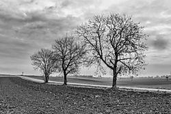 Bavarian_landscape.jpg