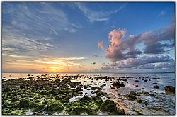 Beach-Slime.jpg