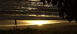 Beach_walker.jpg
