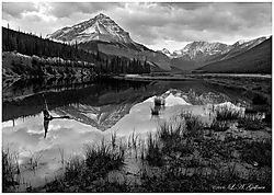 Beauty-Creek-B_L.jpg