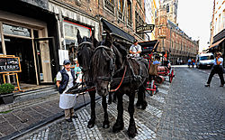 Beer-Wagon-in-Bruges.jpg