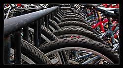 Bike-Rental-d.jpg