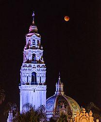 Blood_Moon_Balboa_Park_DSC6644.jpg