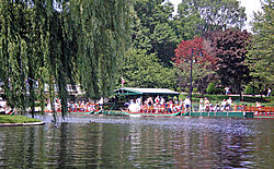 Boston_Swan_Boat_Ride-1.jpg