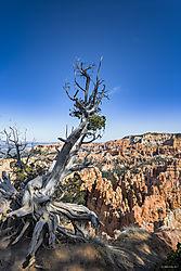 Bryce_Canyon_NP.jpg