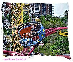 Bug_Ride.jpg