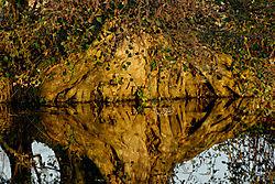 CFA0118_DxO_flickr.jpg