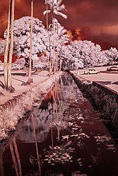 Canal_0614.jpg